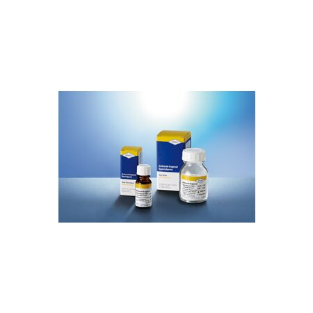 Pulver Paste Spezial Zinkoxyd-Eugenol nh+sh